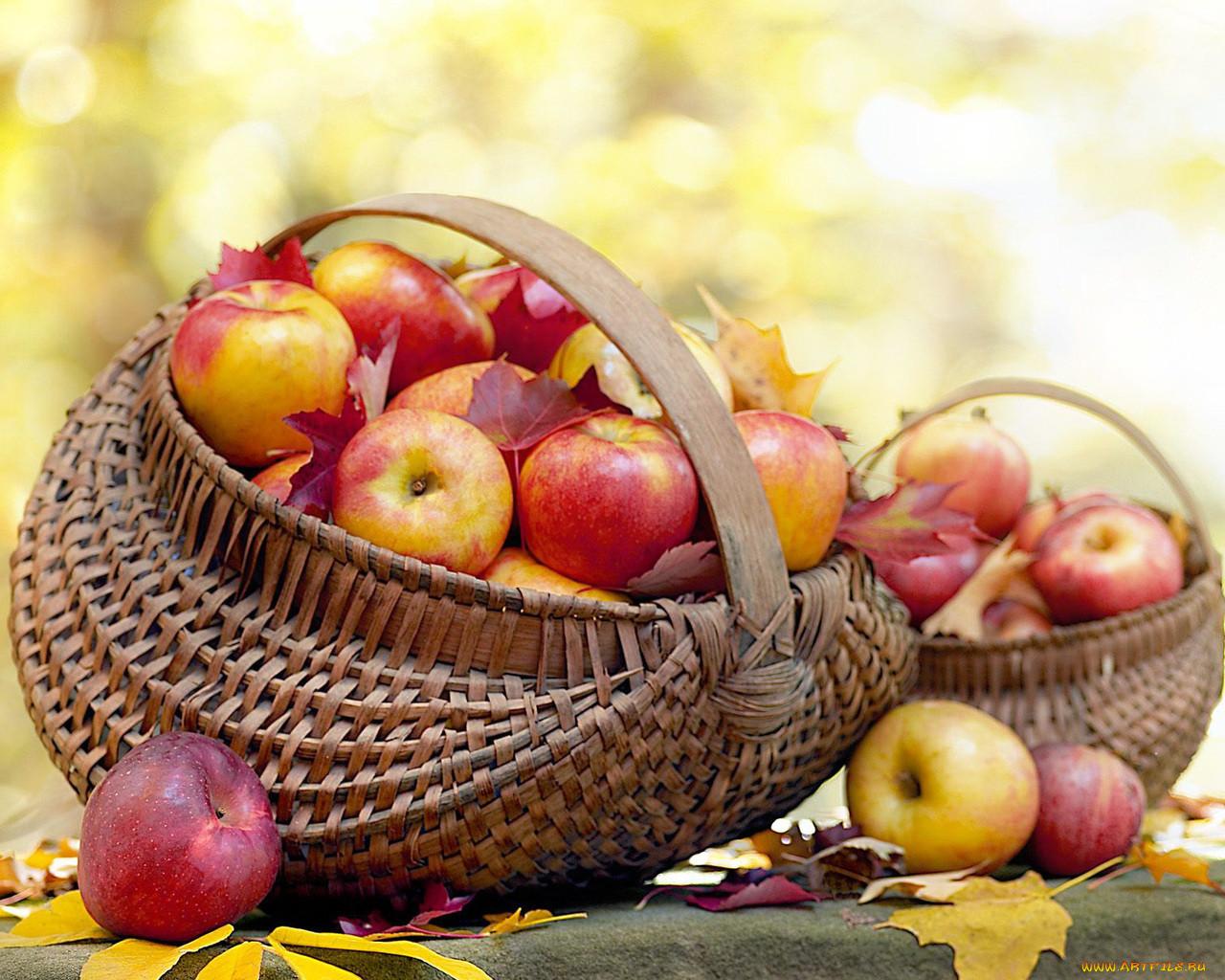 Картинка осенняя корзина с яблоками